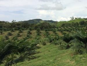 AGSE Panamá (2012 – 2015)